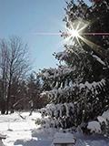 Winter Holiday Retreat